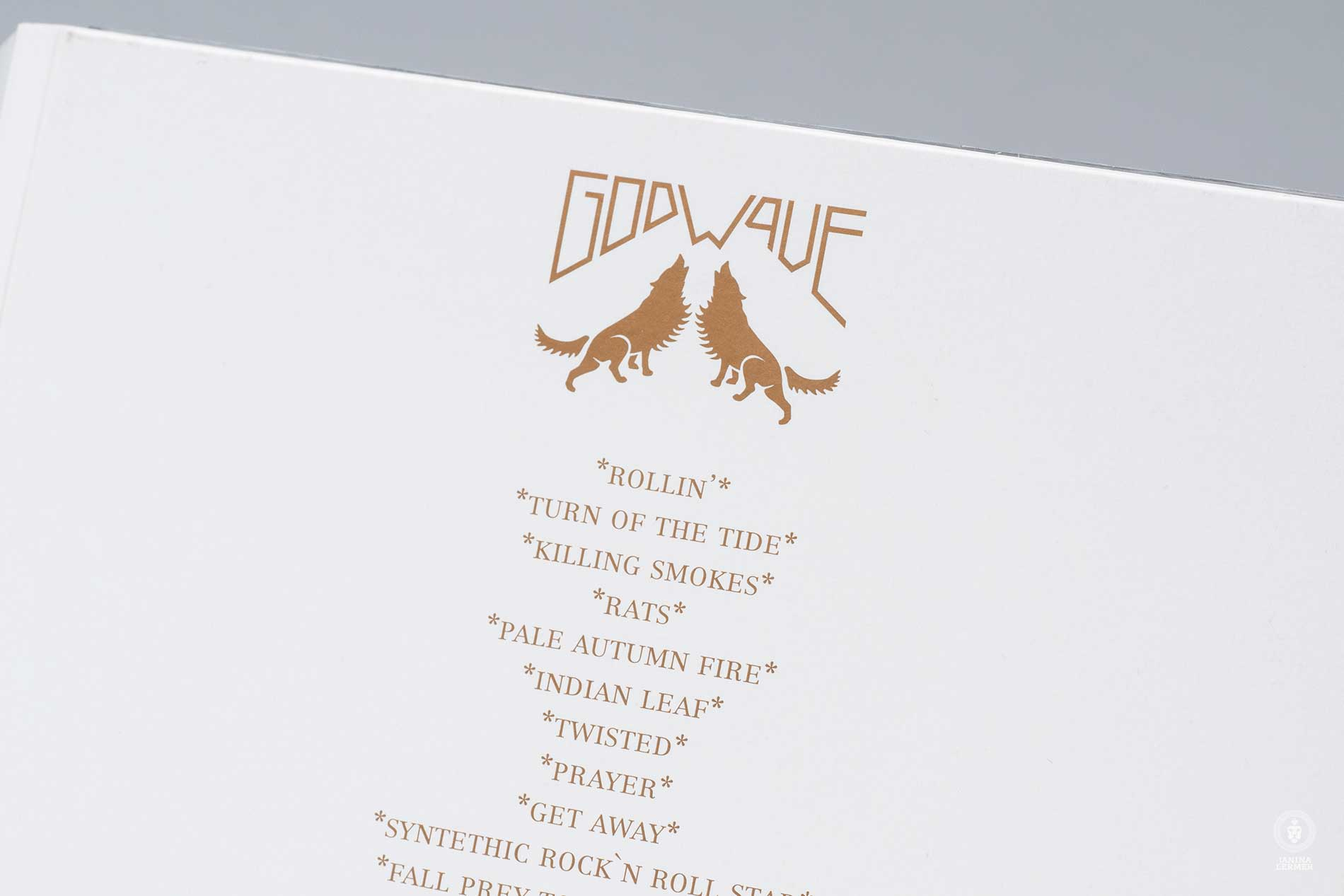 Janina-Lermer-Verpackungsgestaltung-Packagingdesign-CD-Cover-Rueckseite-Flipside-Band-Godwave